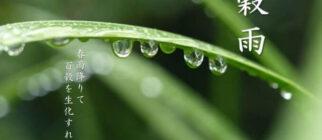 二十四の算数 2021穀雨